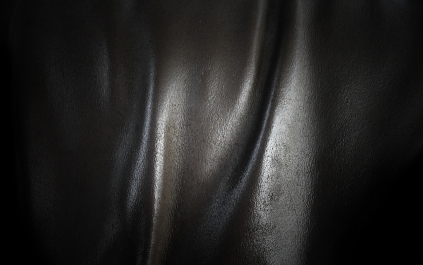 piece-of-leather-9410